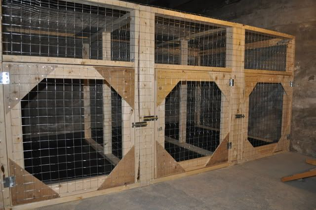 how to build a indoor outdoor dog kennel