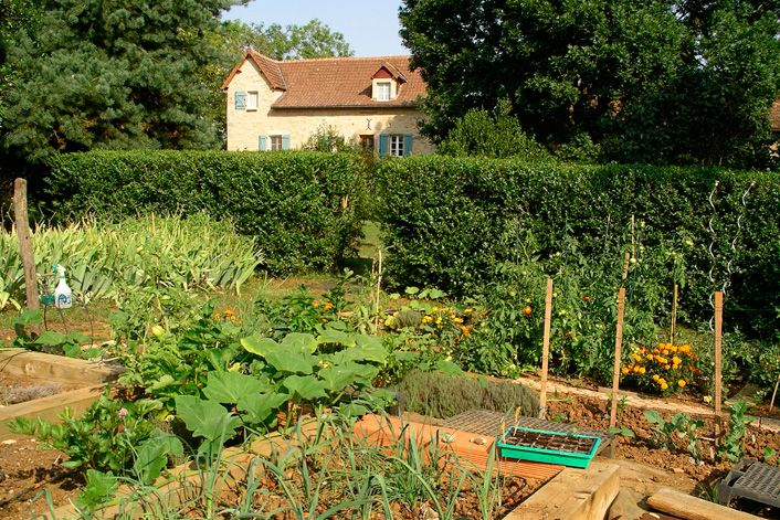 Pin by jackee alston on gardening and permaculture pinterest for French vegetable garden design