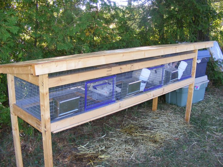 homemade rabbit cages rabbit barn meat rabbits pinterest