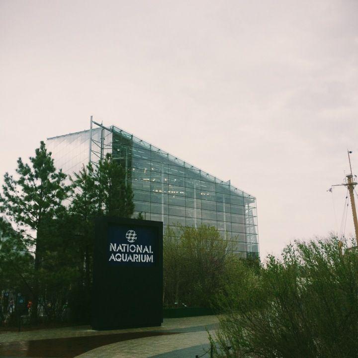 National Aquarium In Baltimore Md Baltimore Pinterest