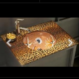 Bathroom on Future Bathroom   Jungle Fever