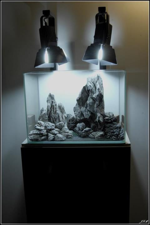 Hardscape by Cryptal912. #aquascaping aquarium fish tank aquasc ...