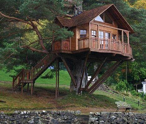 treehouses...