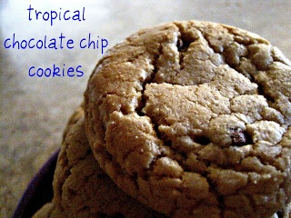 Tropical Chocolate Chip Cookies | Chocolate! | Pinterest