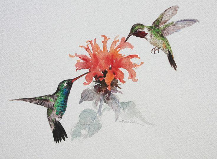 Hummingbird Drawings | Academy of Art University Online Auction
