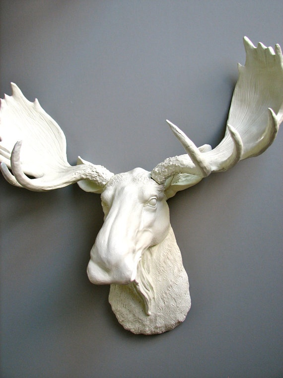 Faux Taxidermy Moose Head. Just purchased for the apartment! :)