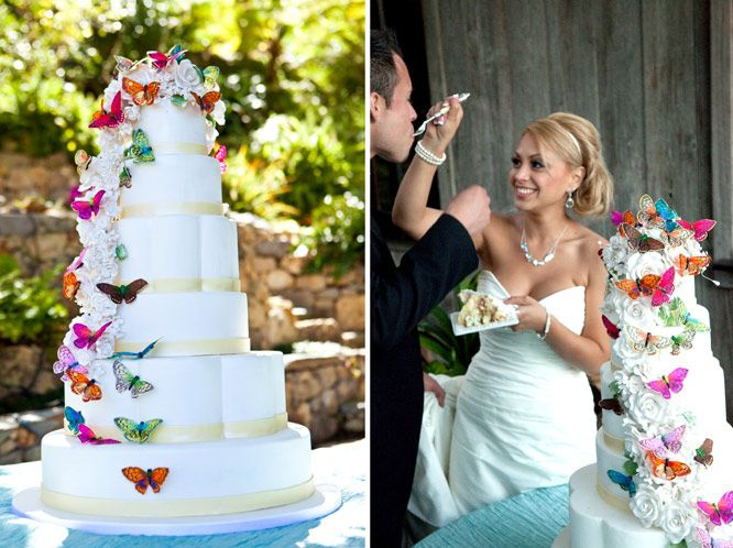 butterfly cake david tutera wedding wedding pinterest