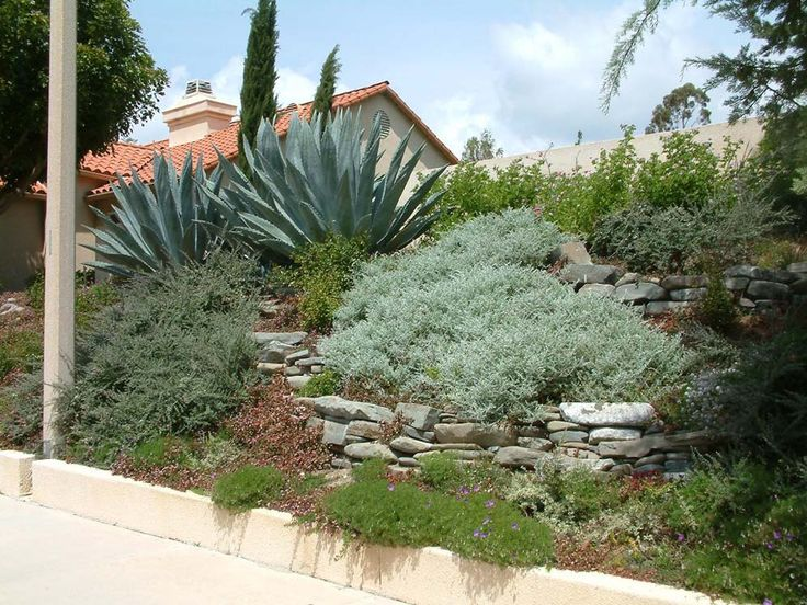 Hillside landscaping back yard ideas pinterest - Ideas for hillside landscape ...
