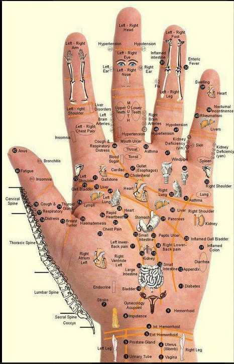 Reflexology Chart - Hand Points.    Press with thumb for 5 seconds for 3 seconds, in the affected point. Repeat for 2-3 minutes for 5 to 10 days.