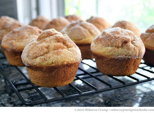 Pumpkin Doughnut Muffins | Recipe to try | Pinterest