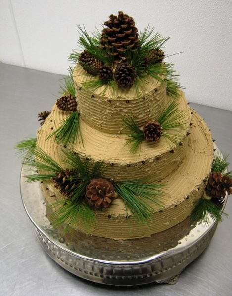 Pine cone cake | discovery | Pinterest
