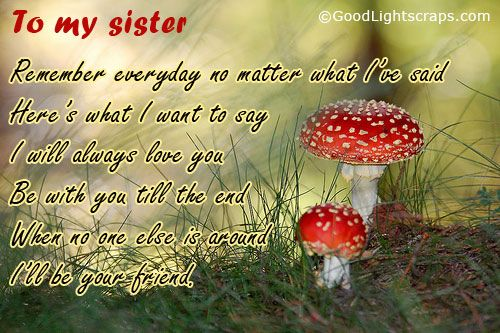 Image detail for -Sister orkut scraps, sister quotes, messages and graphics with sayings ...