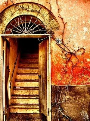 orange tones in door and wall... roots creeping up the foundation blog.hairshoppingmall.com www.hairshoppingmall.com