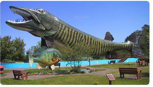 Hayward fish museum on wisconsin pinterest for Fishing season wisconsin
