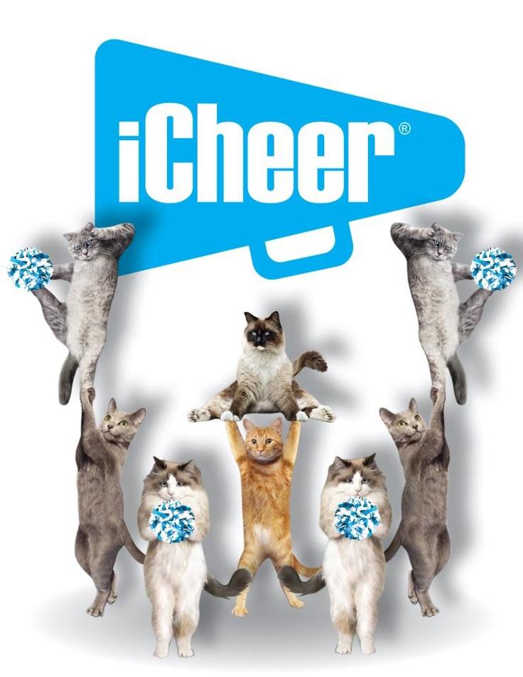 cat cheer up squad