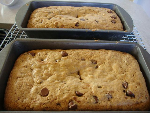 Chocolate Chip Zucchini Bread | Breads/Muffins/Rolls | Pinterest