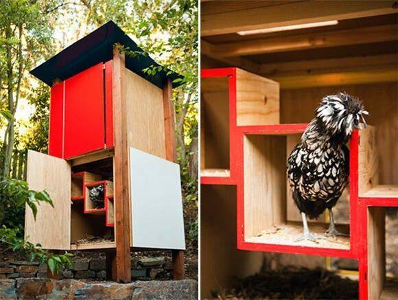 Cool chicken coop raising chickens pinterest for Cool chicken coop plans