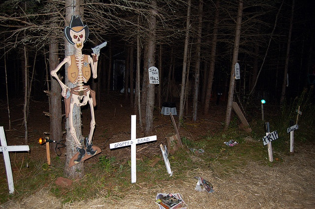 Backyard Haunted Forest Ideas : haunted forest ideas  Haunted House Ideas  Pinterest