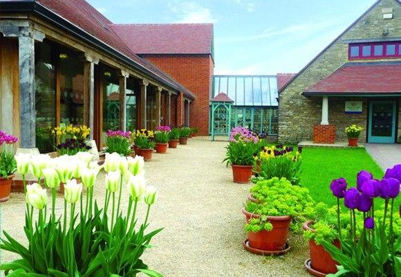 C mo hacer un jard n sostenible t mismo ideas para el - Ideas para un jardin ...
