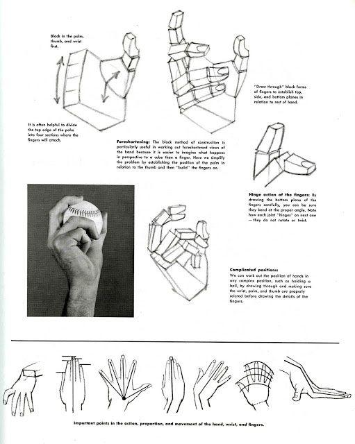 Dibujar la estructura de las manos, construcción de las manos