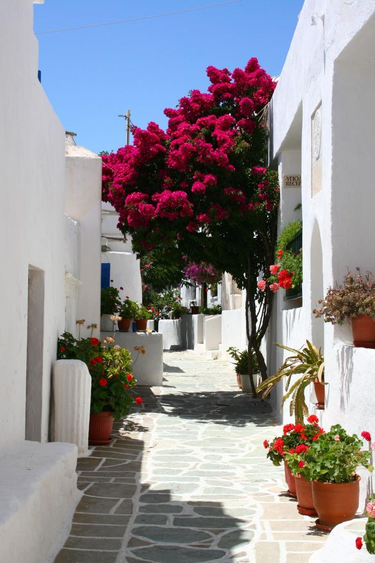 White-washed street of Folegandros island
