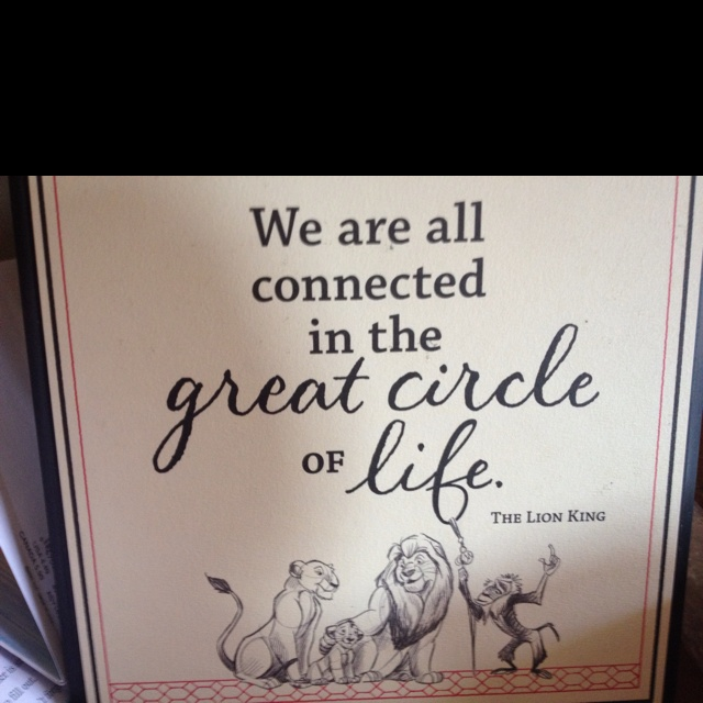 circle of life quotes quotesgram