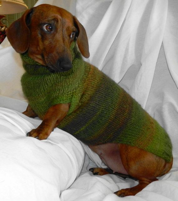 Miniature Dachshund Sweater