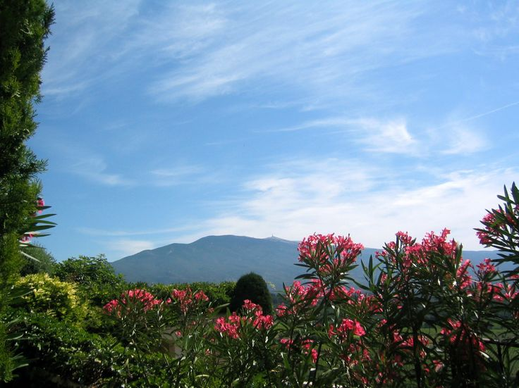 Beautiful views of Mount Ventoux from Hostellerie Crillon le Brave