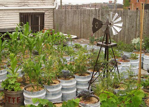Vegetable garden in containers gardening pinterest - Vegetable gardening in containers ...