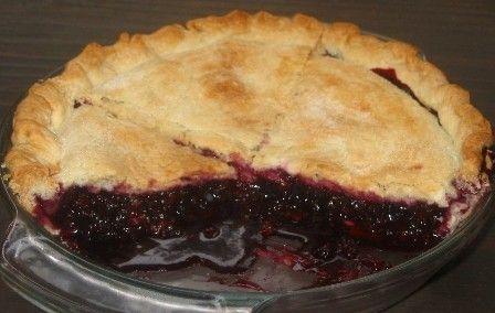 Himalayan Blackberry Pie By lapadia