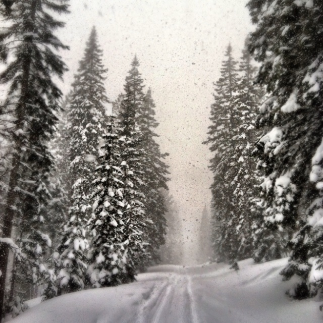 A snowy snowmobile day in Klamath County in late March.