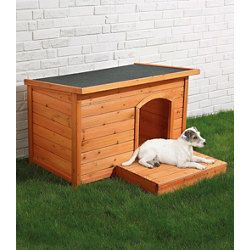 SILVIO design dog kennel with flat roof at the Kennels & Kennel Shop