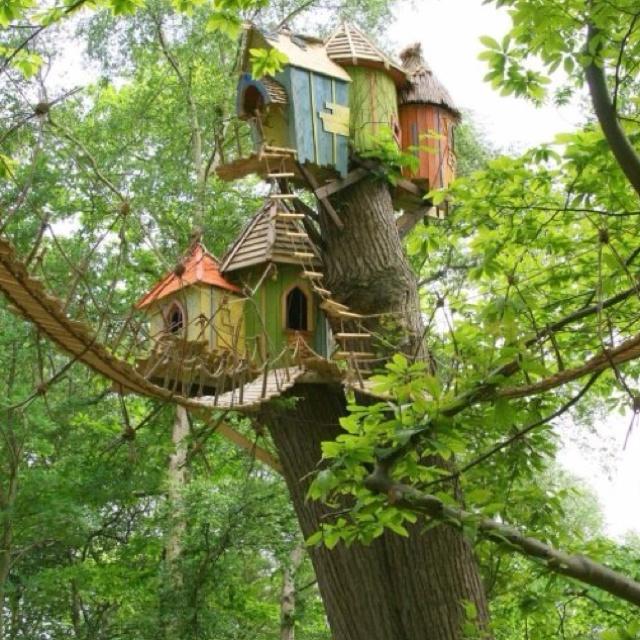 Best Tree House Ever Outside Is Heaven Pinterest