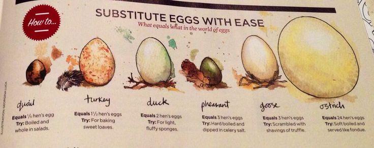 Substitute eggs baking sweet things pinterest - Alternative uses for eggs ...