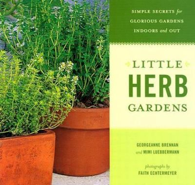 Its no wonder the best selling Little Herb Gardens now