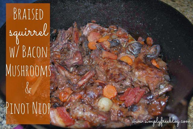 Braised Squirrel with Bacon, Mushrooms, & Pinot Nior #recipe #bacon # ...