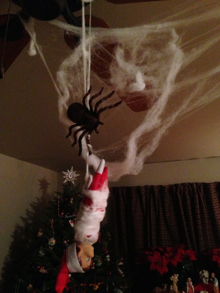 Elf On The Shelf Spider Web Elf On The Shelf Pinterest