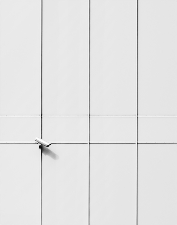 KPK photography | WhiteEye