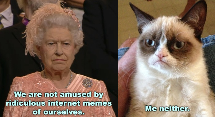 The Queen is not amused! | Tard, the grumpy cat | Pinterest