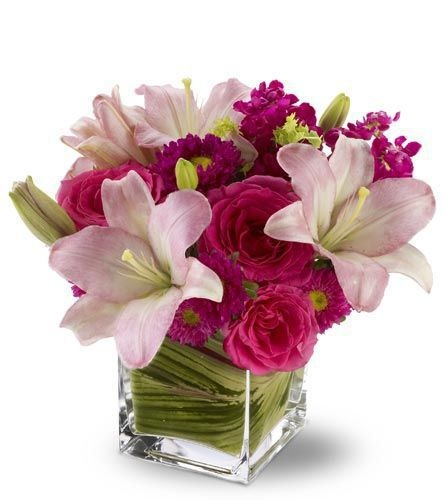 Florist Since 1883 St Louis Missouri Flowers Saint Louis MO