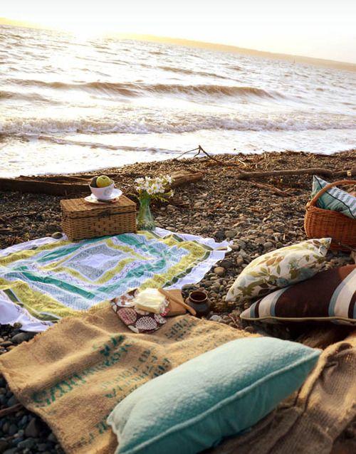 Beach Picnic x