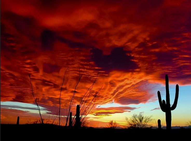 Tucson -  Photo ~ Krieger Conradt