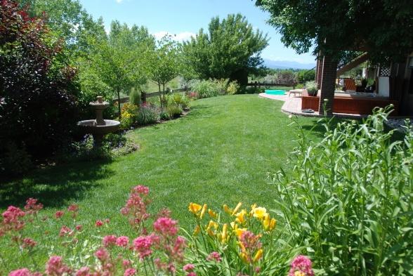 colorado backyard escape recyle yard pinterest