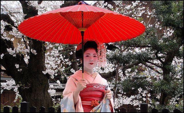 geisha apprentice