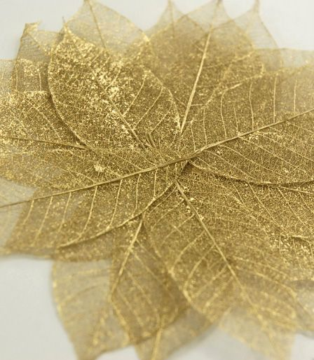 Gold Metallic Skeleton Leaves