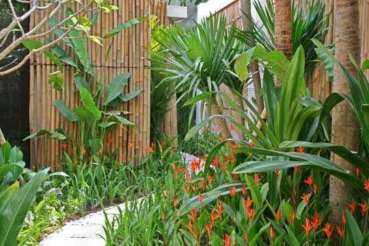 Bali garden australia tropical garden pinterest for Bali garden designs