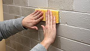 Sponge on Bricks