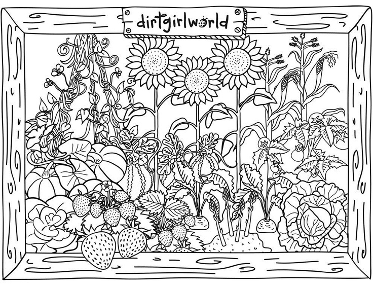 Holiday Coloring Pages Thanksgiving Free Veggie Garden Page