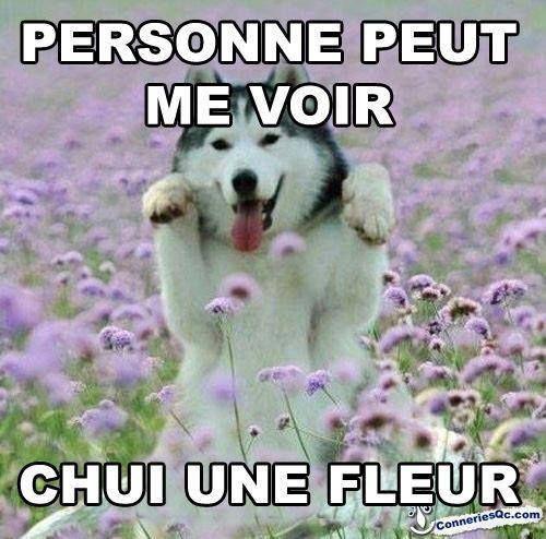 Personne peut me voir chui une fleur funny pinterest - Peut on expulser une personne agee ...