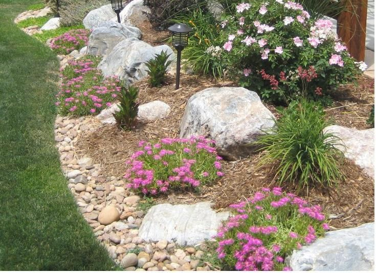 rock garden border with bouldrers landscape and outdoors
